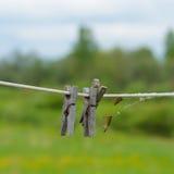 Старые деревянные зажимки для белья на веревочке Стоковое Изображение RF