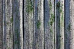 Старые деревянные планки с треснутой краской цвета стоковая фотография rf