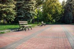 Старые деревянные скамьи в парке лета Стоковые Изображения
