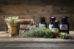 Старые естественные медицина, травы и медицины Стоковые Фотографии RF