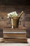 Старые естественные медицина, травы и медицины Стоковая Фотография RF