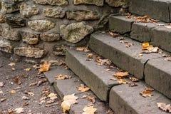 Старые лестницы в осени Стоковые Фотографии RF
