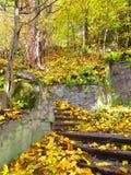 Старые лестницы, Kamenets Podolskiy, Украина Стоковые Фото