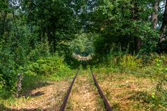 Старые железнодорожные пути в лесе с человеком на велосипеде Стоковое Изображение RF