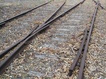 старые железнодорожные следы Стоковые Изображения RF