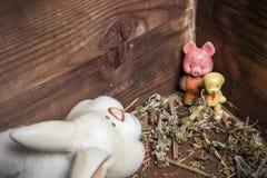 Старые игрушки - кролик, собака и свинья в деревянном комоде Стоковые Фотографии RF