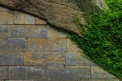 Старые каменная стена и каменная кладка с зеленым плющом Стоковое фото RF