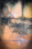 Старые каменные плитки Стоковое Изображение