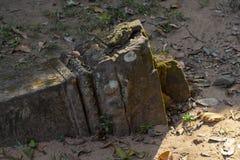 Старые каменные руины в виске Angkor Wat Мшистый высекаенный каменный штендер в земле Руины виска наследия кхмера в джунглях стоковые фото