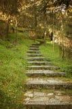 Старые каменные шаги Стоковые Фотографии RF