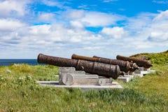 Старые карамболи против голубого неба лета Стоковое Фото