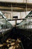 Старые катышкы пряжи и промышленное оборудование - покинутая текстильная фабрика Стоковое Фото