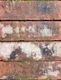 Старые кирпичи с некоторым мхом, текстурой предпосылки, концом вверх Стоковые Изображения RF
