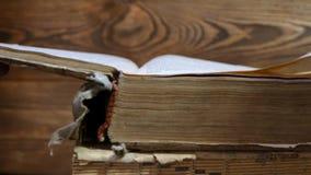Старые книги в архиве библиотеки Окантуйте старую книгу с вашими руками Прочитайте историческую литературу Архив церков сток-видео