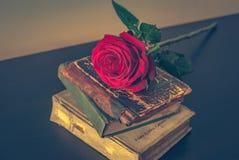 Старые книги и подняли Стоковое Изображение RF