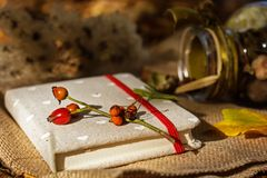Старые книги среди листьев осени под мягким солнечным светом Стоковые Изображения