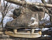 старые коньки стоковое фото rf