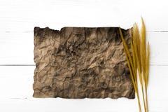 Старые коричневая бумага и пшеница Стоковые Изображения RF
