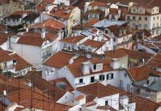 Старые красные крыши Стоковое Изображение