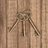 Старые ключи Стоковое Изображение RF
