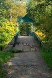старые люди моста стоя 2 Стоковые Фотографии RF