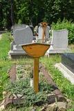 Старые надгробные плиты стоковое фото rf
