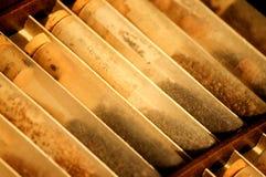 Старые образцы семян стоковое изображение rf