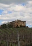 Старые дом и виноградник стоковые изображения