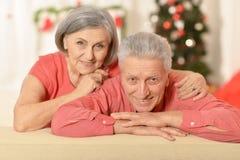 Старые пары на рождестве Стоковое Изображение RF