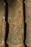 старые плитки толя Стоковая Фотография