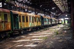 Старые поезда на покинутом депо поезда Стоковая Фотография RF