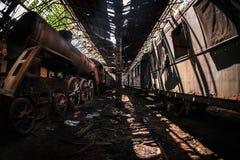 Старые поезда на покинутом депо поезда Стоковые Изображения