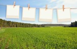 Старые поляроидные рамки фото вися на веревочке перед открытым полем благоустраивают предпосылку Стоковые Изображения RF