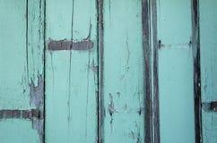 Поверхность картины древесной зелени Стоковые Фотографии RF