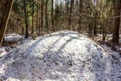 Старые прибалтийские и славянские насыпи в лесе зимы стоковые фото