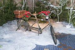 Старые ретро тандемные оформления велосипеда и рождества, красные цветки Фото 2018 перемещения декабрь стоковое изображение
