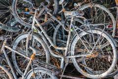 Старые ржавые велосипеды/велосипеды стоковые фотографии rf