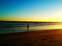 Старые други на пляже Стоковые Изображения