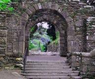 Старые руины Ирландия Стоковая Фотография RF