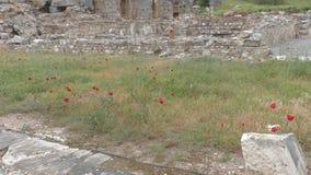Старые руины и виски на Ephesus как этническое наследие наших предшественников видеоматериал