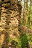 Старые руины Стоковое Изображение RF