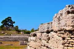 Старые руины Paestum Италия стоковое фото rf