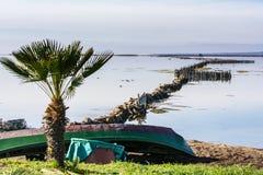 Старые рыбацкие лодки с яркими цветами на зоре на озере стоковая фотография