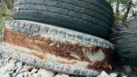 Старые сорванные автошины тележки брошенные дорогой акции видеоматериалы