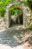 Старые старые винтажные лестницы камня замка с деревьями и лесом Стоковая Фотография RF