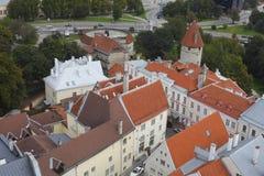 Старые стена городка и башни, Таллин Стоковые Фото