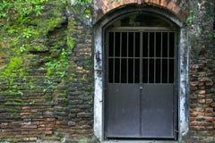 Старые стена и дверь с mos Стоковые Изображения RF