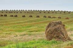 Старые стога сена last year Стоковое Фото