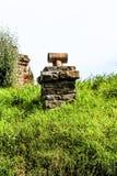 Старые строб и путь фермы в Новой Зеландии Стоковое Фото