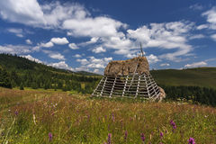 Старые традиционные румынские амбар или лачуга с крышей соломы стоковые фото